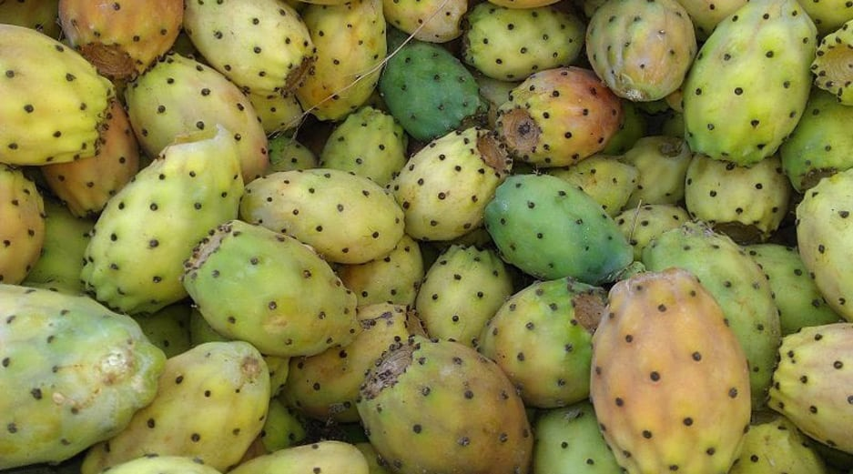 Prickly Pear - Malta Fruit and Vegetables