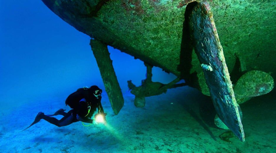 Things to do in Gozo Malta - Diving